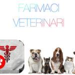 Farmaci veterinari su internet: il loro acquisto è sicuro?